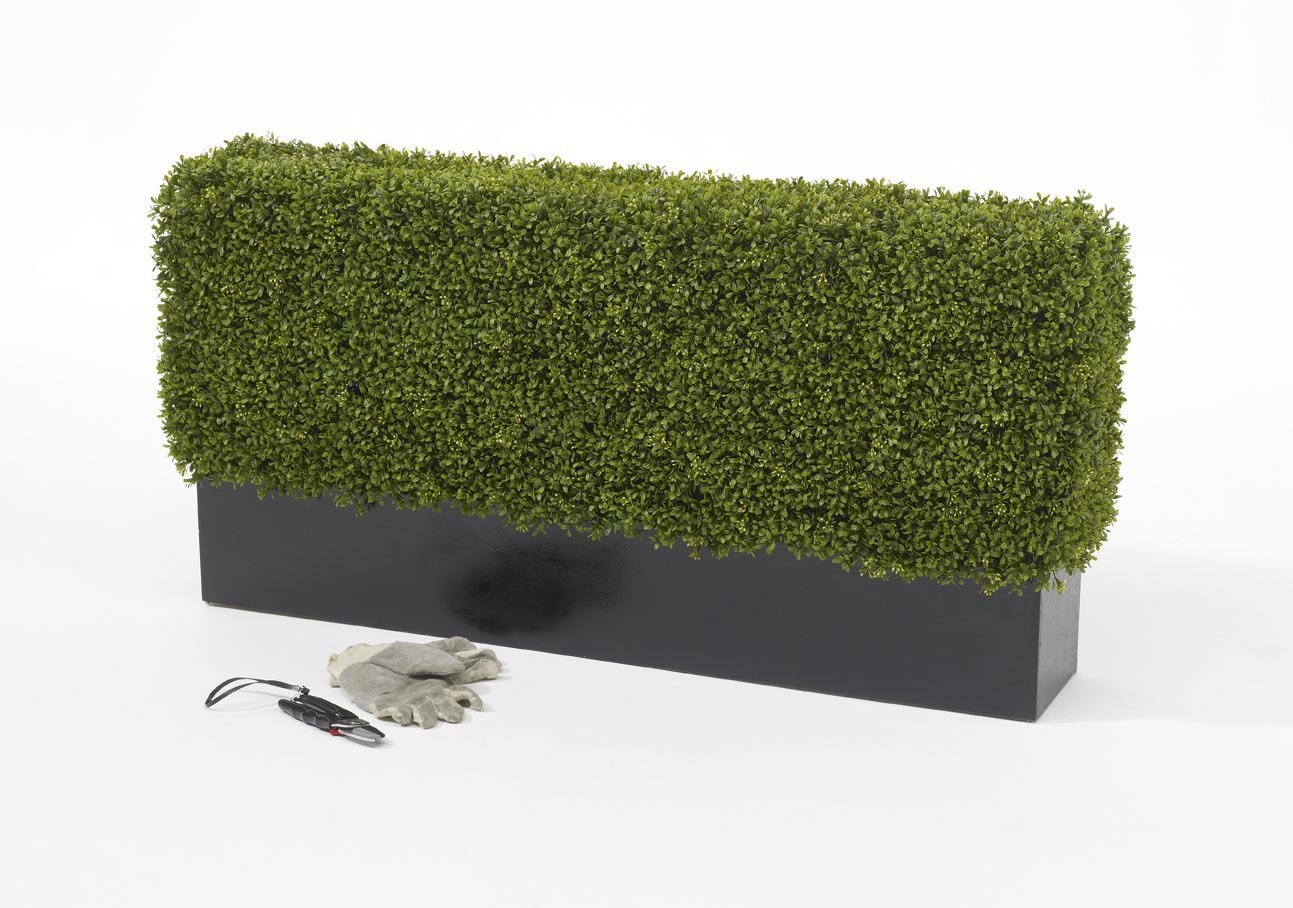 Image Result For Artificial Grass Cost