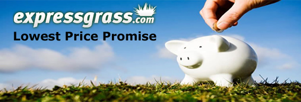 Express Grass - Lowest Price Promise Banner